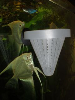 Convenient  Cone Shaped Worm Feeder